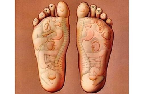 Ghế massage chân và các thông tin bạn không thể bỏ qua